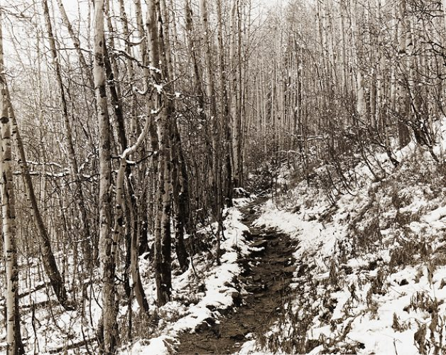 The Path of Ten Frozen Toes
