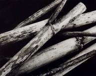 Chopped Sticks
